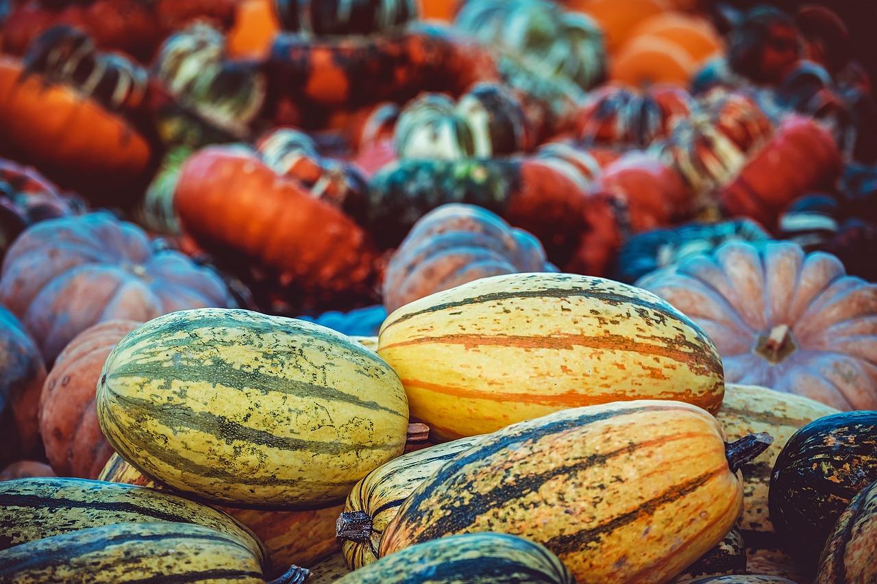 pumpkin-3759587_1280